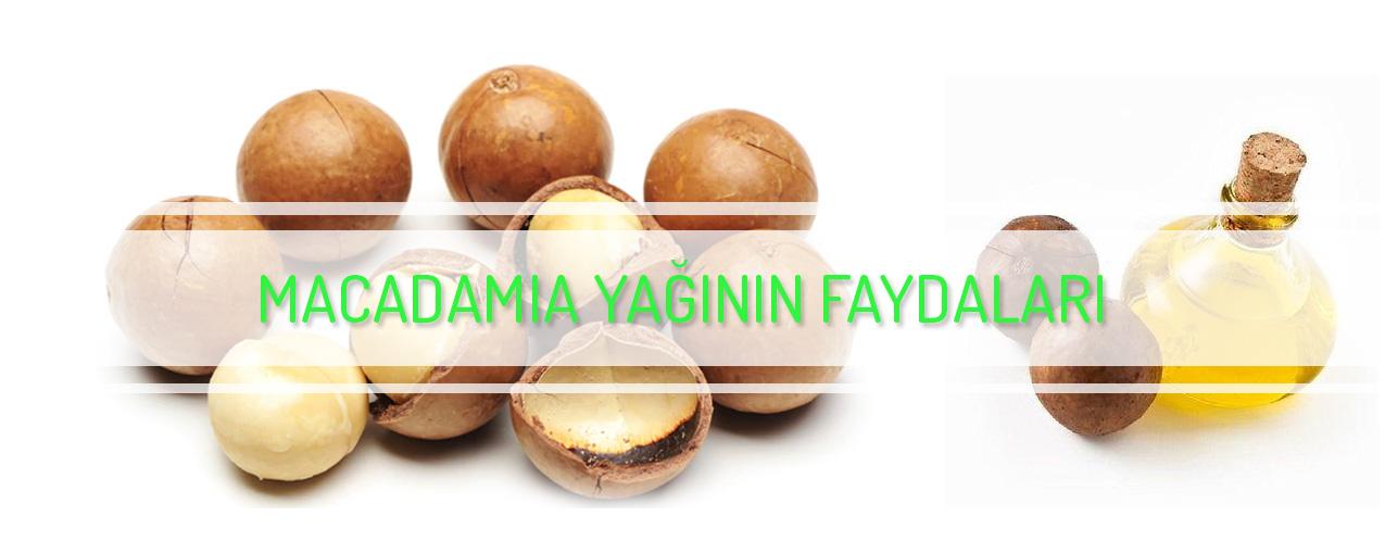 Macadamia fındık yağının faydaları